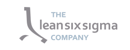 lean six sigma company